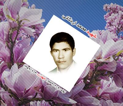 شهید محمد اردکانی