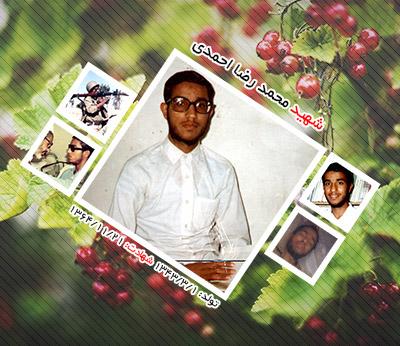 شهید محمد رضا احمدی اردکانی