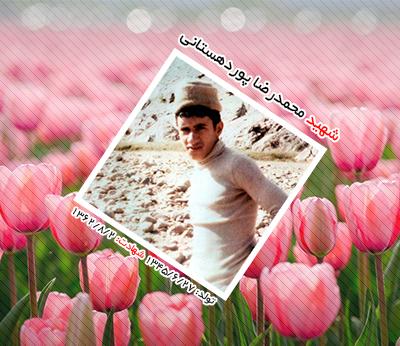 شهید محمد رضا پوردهستانی