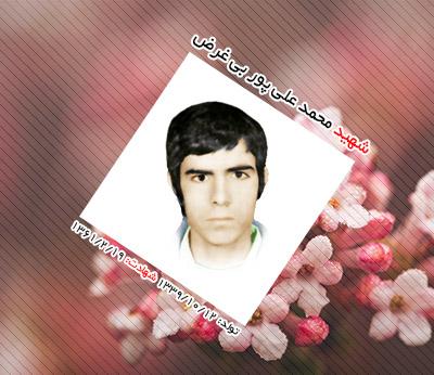 شهید محمد علی پور بی غرض اردکانی