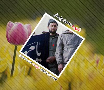 شهید محمد پایدار اردکانی