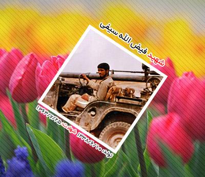 شهید فیض الله سیفی احمدآبادی