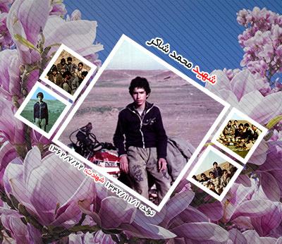 شهید محمد شاکر اردکانی