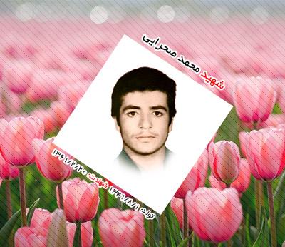 شهید محمد صحرایی اردکانی