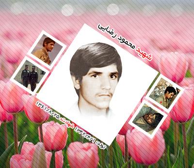 شهید محمود رضایی هفتادر