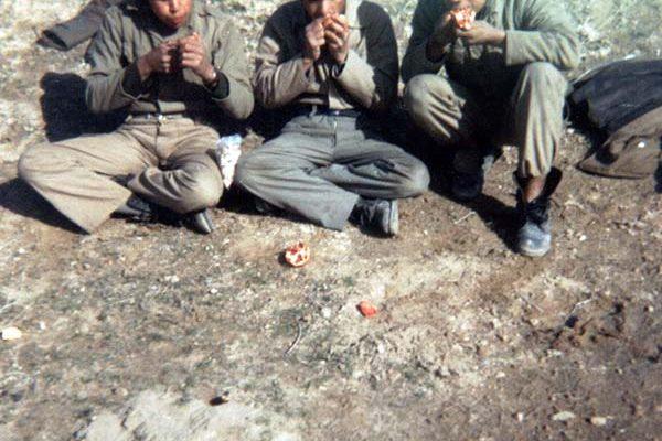 شهید محمد رضا حیدری شریف آباد