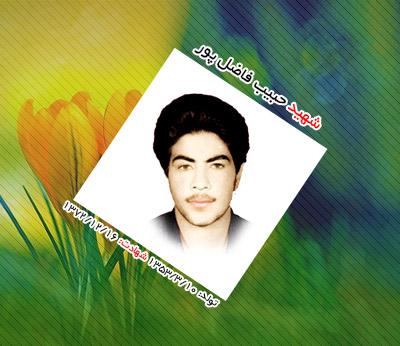 شهید حبیب فاضل پور عقدایی