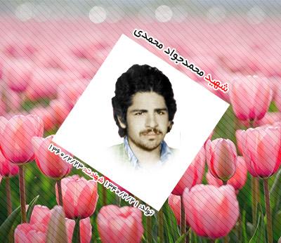 شهید محمدجواد محمدی ترک آباد