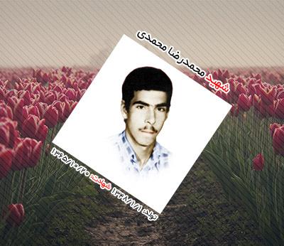شهید محمدرضا محمدی ترک آباد