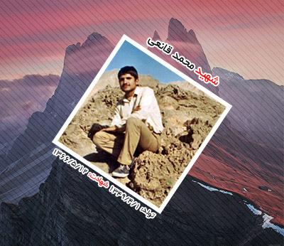 شهید محمد قانعی اردکانی